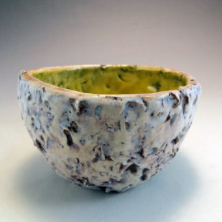 Henpecked Bowl in Marigold