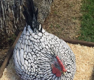 Big Broody Ceramic Chicken